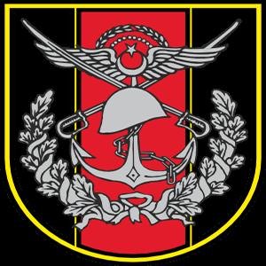 tsk, türk silahlı kuvvetleri